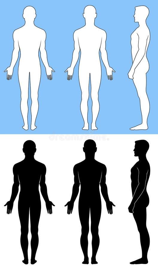 naga mężczyzna pozycja ilustracja wektor