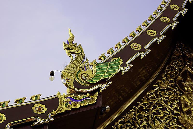Naga ptak na szczycie obrazy stock