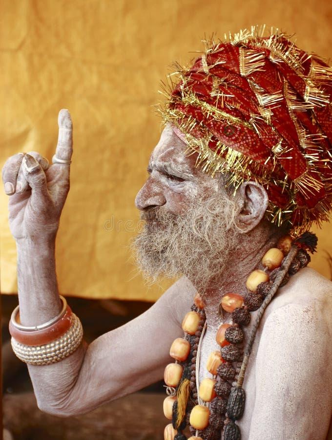 NAGA SADHU, HEILIGE MENSEN VAN INDIA royalty-vrije stock foto