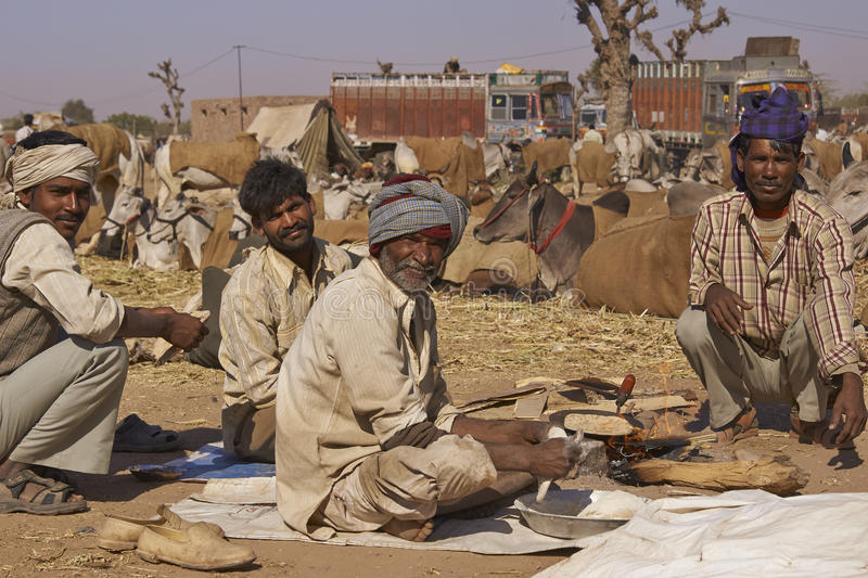 Nagaur Livestock Fair, India. Group of men prepare the first meal of the day after a night in the open at the annual livestock fair in Nagaur, India royalty free stock images