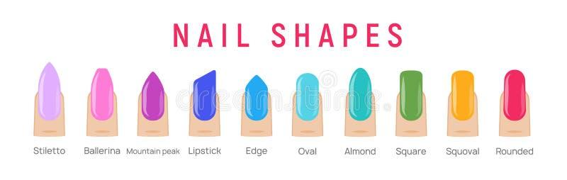 Nagelformer, manicure vetor art Fingernail form french form design mode salon stock illustrationer