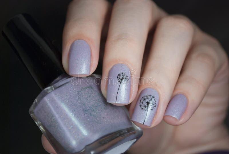 Nagellack in einer Hand auf einem schwarzen Hintergrund Leichte Nagelkunst mit Löwenzahn lizenzfreie stockfotos