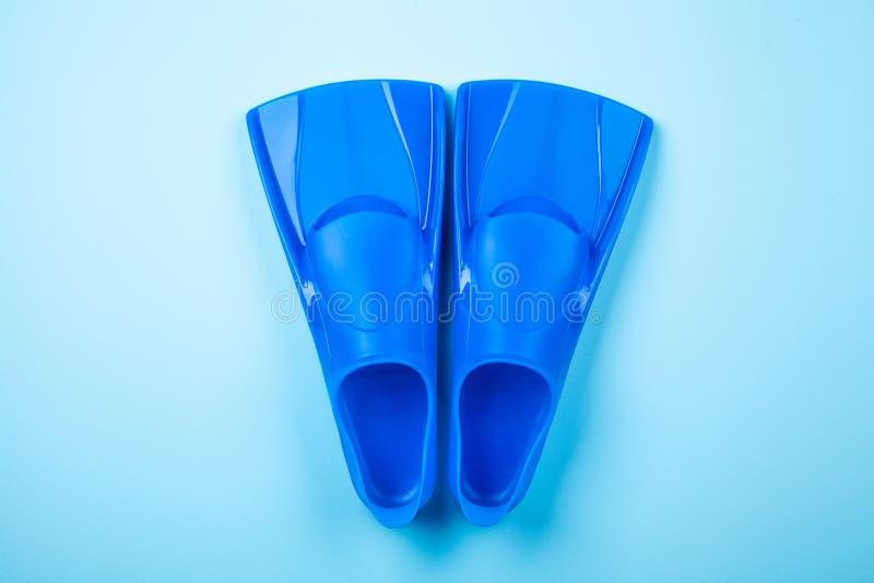 Nageoires bleues sur le fond de couleur image libre de droits