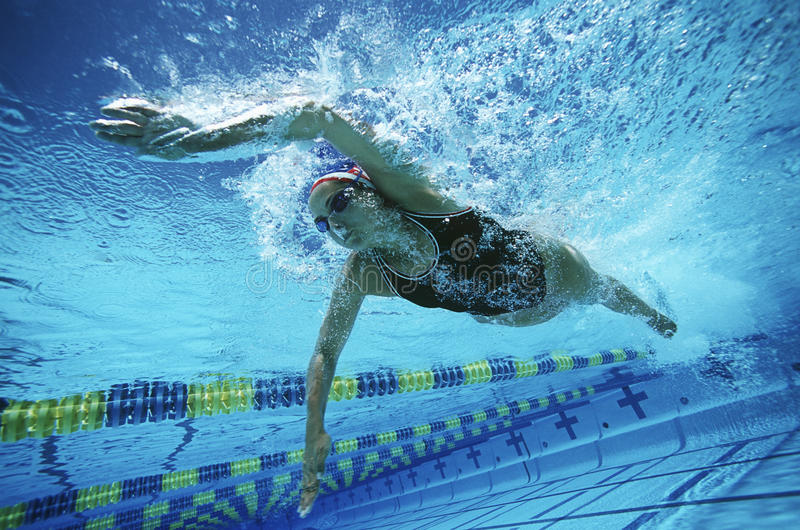 Nageur féminin Swimming In Pool image stock