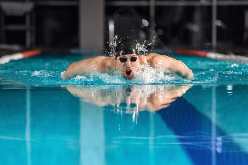 Nageur masculin nageant la course de papillon photos stock