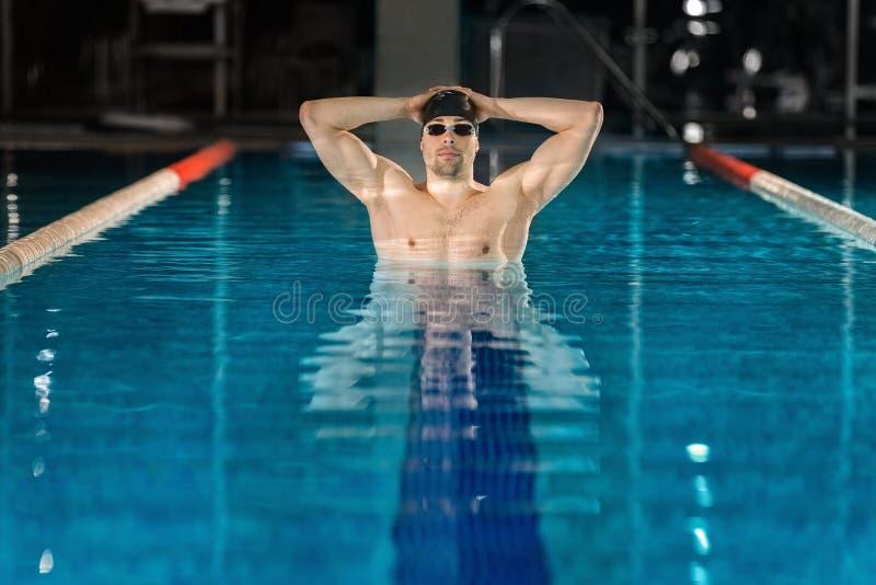Nageur masculin se tenant dans la piscine photos libres de droits