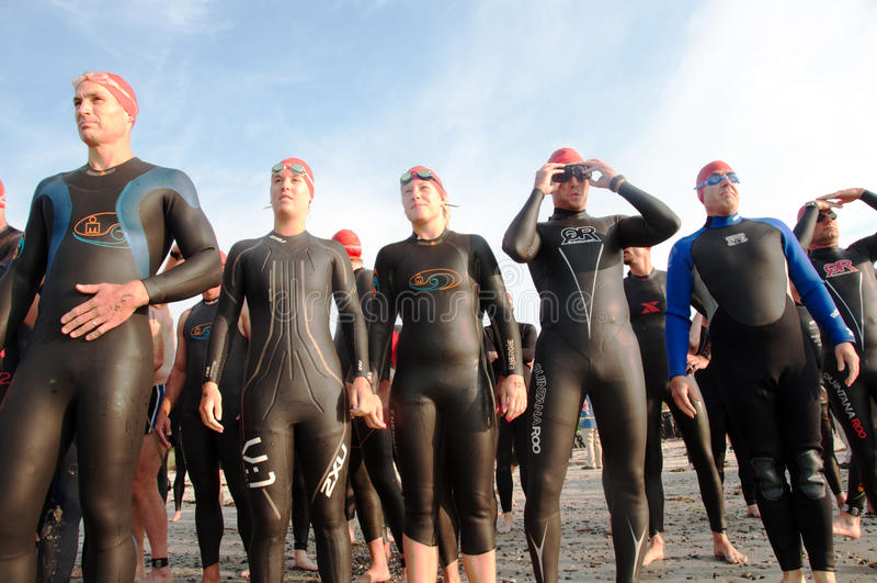 Nageurs de Triathlete à la ligne de départ image stock