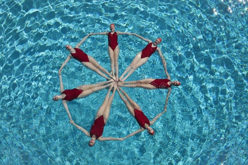 Nageurs synchronisés formant un cercle images libres de droits