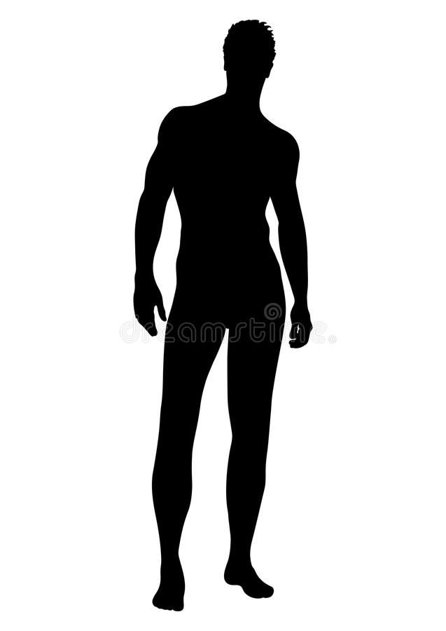Nagiego mężczyzna wektorowa sylwetka, konturowa istota ludzka, konturu portreta mięśniowa męska atleta stoi frontową stronę długą ilustracji