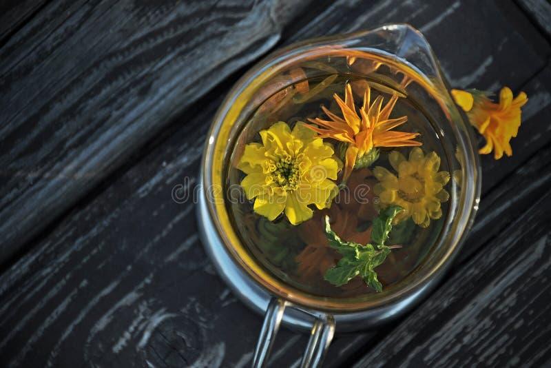Nagietek z Calendula mennicą i kwiatami obraz stock