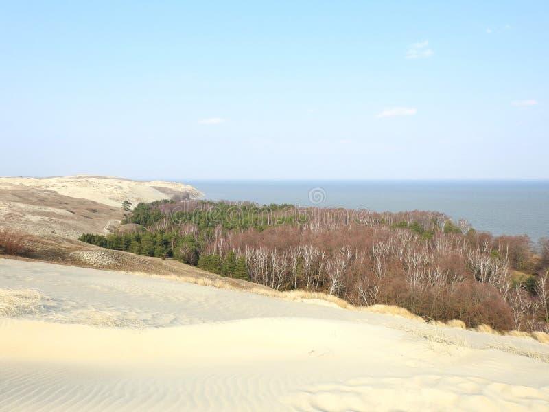 Nagliu dunes in Neringa, Lithuania royalty free stock image