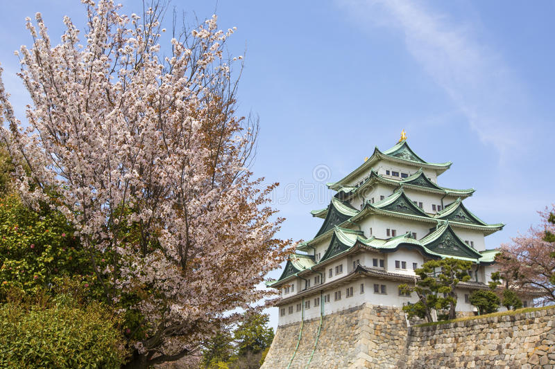 Nagoya Castle. In Japan during cherry blossom season in spring stock photography