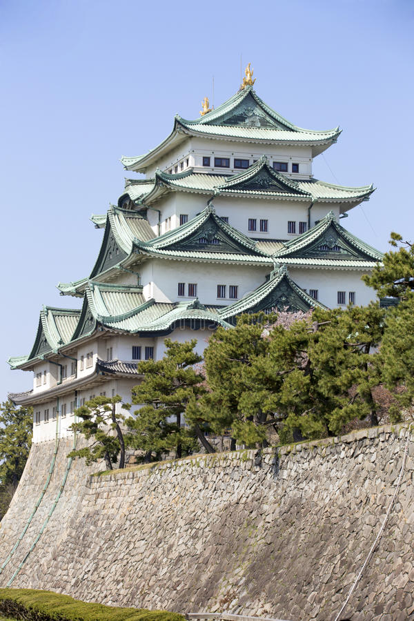 Nagoya Castle. In Japan during cherry blossom season in spring royalty free stock image