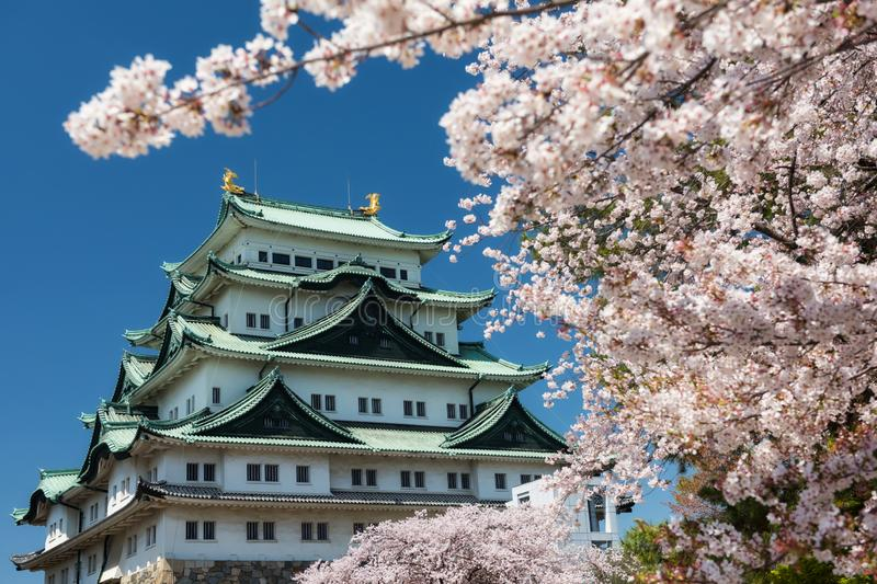 Nagoya Castle with white sakura frame stock photography