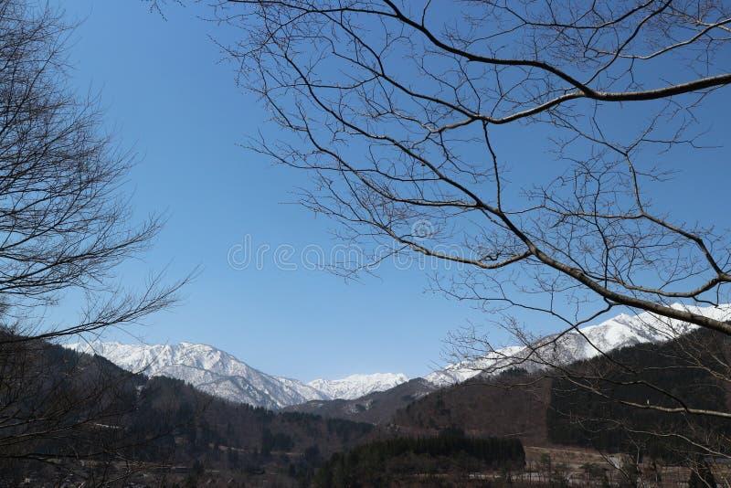 Nagoya, Frühlingsbäume ohne Blätter gegen mit blauen Himmel 3-9 Aprial 2019 stockfotos