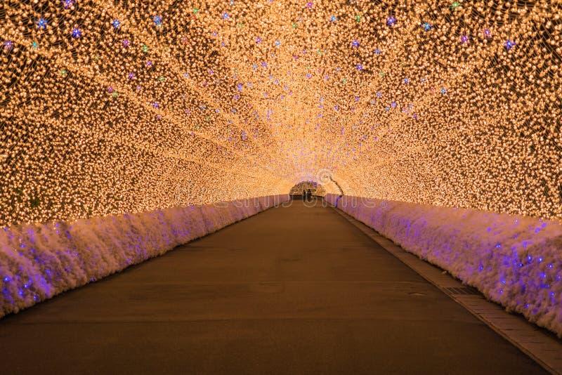 Nagoya, Japan Nabana geen Sato-tuin bij nacht in de winter stock fotografie