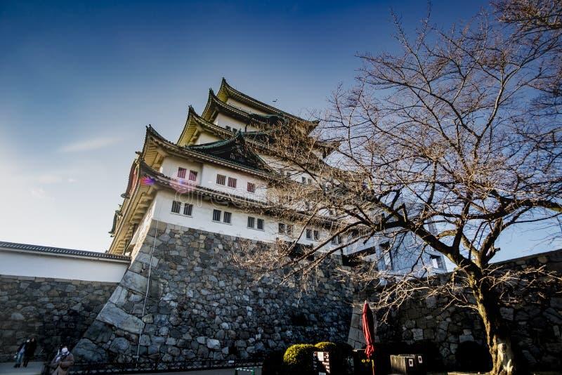 Nagoya slott royaltyfri foto