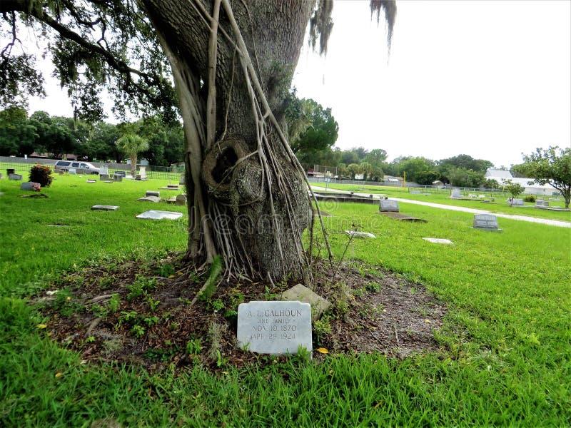 Nagrobek pod dębowym drzewem, bocznia, Floryda obrazy royalty free