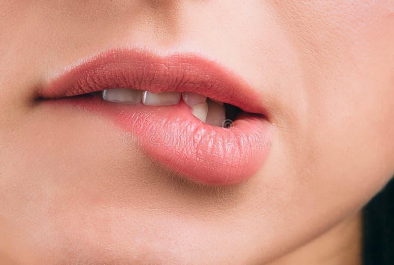 Nah oben von den Schönheiten bedeckten Lippen mit Lippenstift Untere Lippe des Bisses Wei?e Z?hne Reizvolle Bewegung Schneiden Si lizenzfreies stockbild