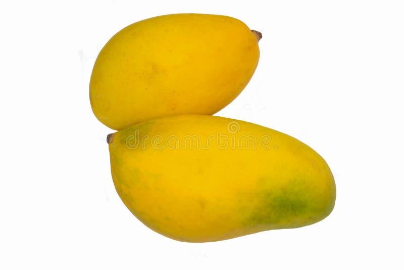 nah oben von zwei reifen frischen Mangos stockfotografie