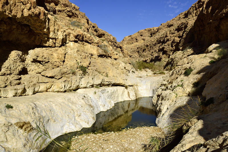 Nahal Zafit in Negev-woestijn stock foto's