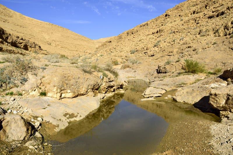 Nahal Zafit w pustynia negew obraz stock