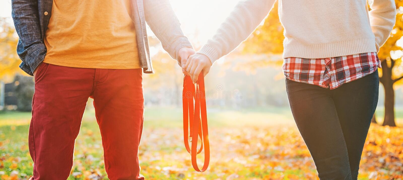 Nahaufnahme auf den jungen Paaren, die Leine im Herbstpark zusammenhalten stockbilder