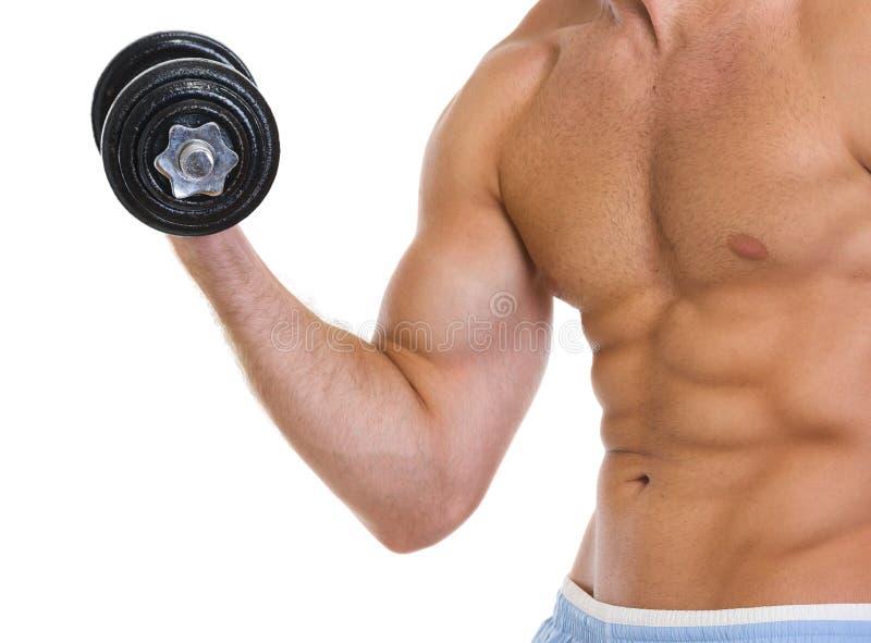 Nahaufnahme auf Mann-Trainingszweiköpfigem muskel mit Dumbbell lizenzfreie stockfotos