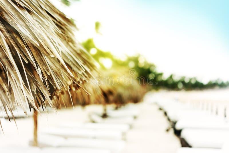 Nahaufnahme auf Sonnenschutz von den Palmblättern, Stühle für lizenzfreies stockbild