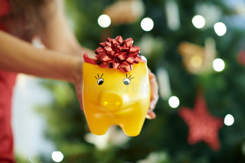 Nahaufnahme auf Sparschwein in der Hand der Frau nahe Weihnachtsbaum stockfotografie