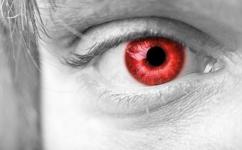 Nahaufnahme das rote Vampirauge stockfoto