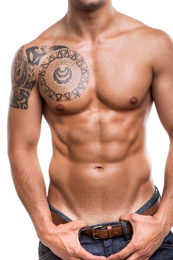 Nahaufnahme Der Bauchmuskeln Stockfoto - Bild von jeans, stattlich ...