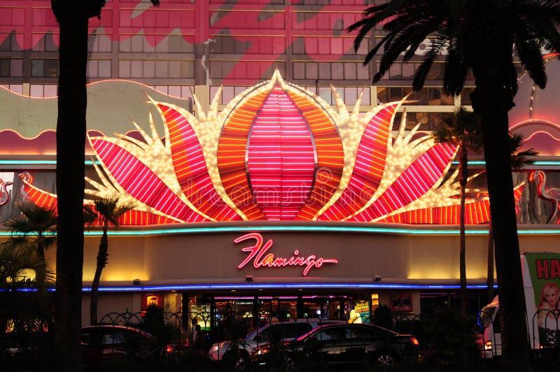 Flamingo-Leuchtreklame stockfotografie