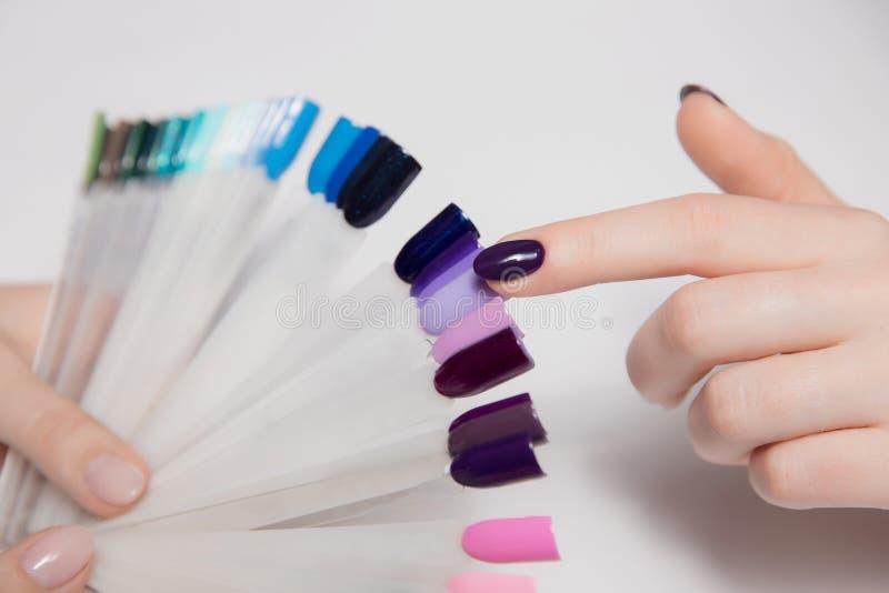Nahaufnahme der Frau Hand Mädchen mit dem schönen Manikürefinger wählt neuen Lack von der Farbpalette vor lizenzfreie stockfotos