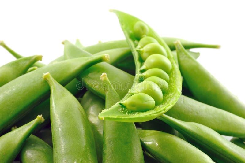 Nahaufnahme der frischen grünen Erbse stockbild