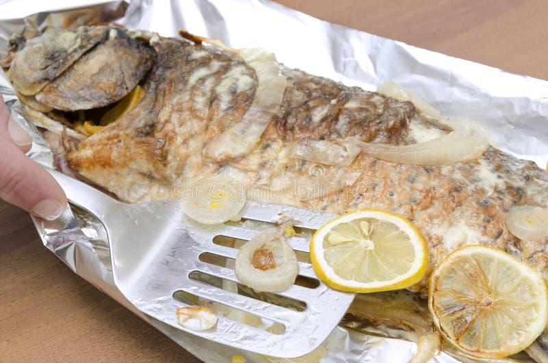 Nahaufnahme der Spachtel, Scheiben der Zitrone auf gegrillten Karpfenfischen brannte zu Chips lizenzfreies stockbild
