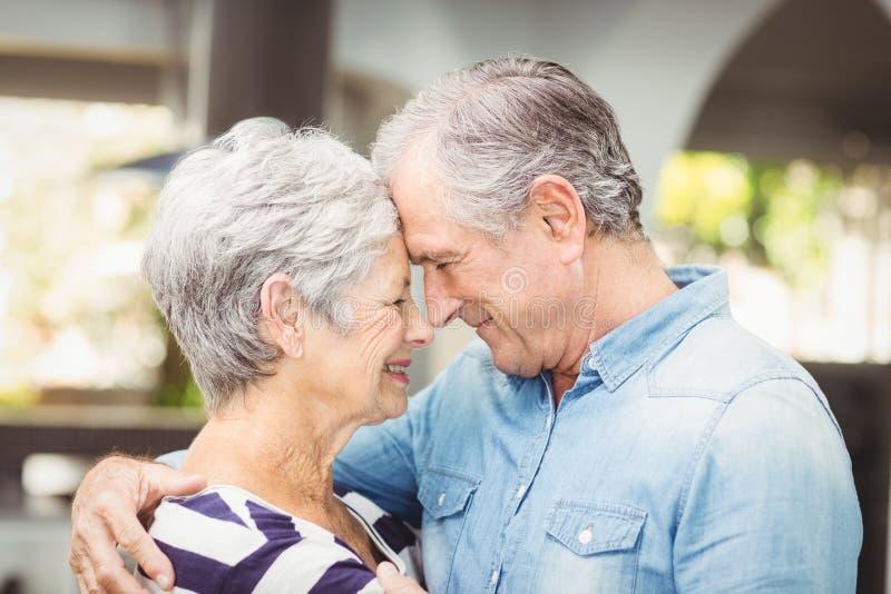 Nahaufnahme der Umfassungsfrau des romantischen älteren Ehemanns lizenzfreies stockfoto