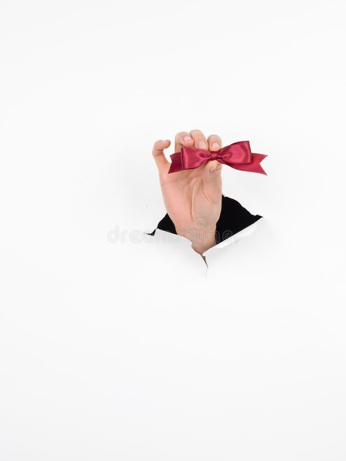 Hand, die einen glänzenden Bogen Burgunders hält stockfotografie
