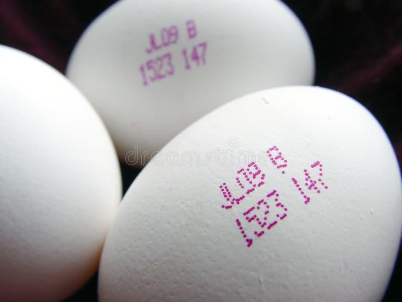 Nahaufnahme der zukünftigen Eier lizenzfreies stockbild