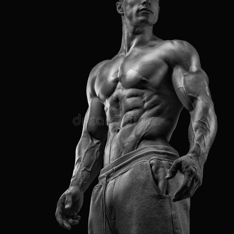 Nahaufnahme des athletischen muskulösen Mannes stockfotografie