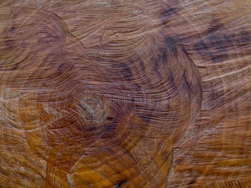 Nahaufnahme des Baumstumpfs mit sah Kennzeichen stockfoto