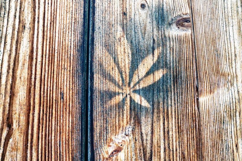 Nahaufnahme des Blattes gedruckt auf hölzerner Wand lizenzfreie stockfotos