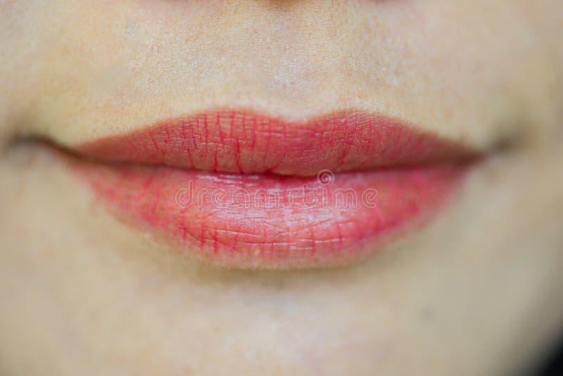 Nahaufnahme des geschlossenen weiblichen Munds mit den vollen Lippen stockbilder