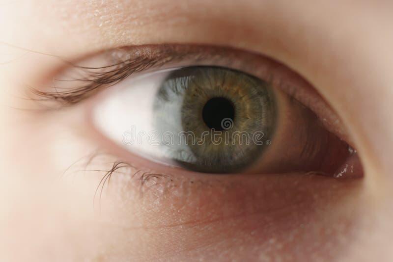Nahaufnahme des grünen Auges der Jugendlichen, das gerade schaut lizenzfreie stockfotografie
