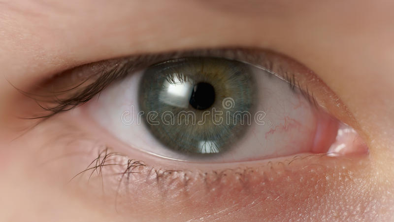 Nahaufnahme des grünen Auges der Jugendlichen, das gerade schaut stockfoto