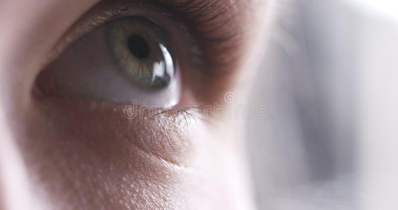 Nahaufnahme des Jugendlicheauges ohne das Make-up, das oben schaut stockbild