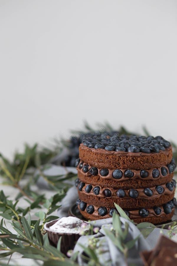 Nahaufnahme des köstlichen Kuchens der Schokolade mit Blaubeeren auf einem weißen Hintergrund mit einem grünen Gras in einer rust stockfoto