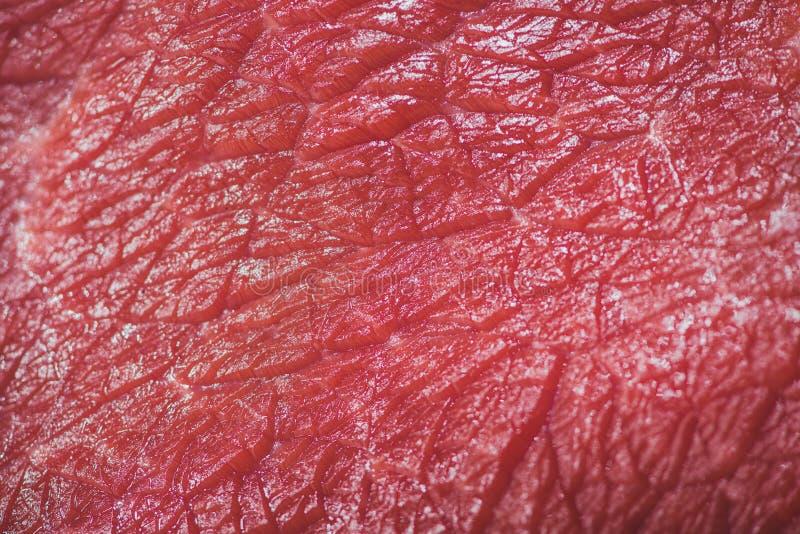 Nahaufnahme des rohen Rindfleischbeschaffenheitshintergrundes stockfotos