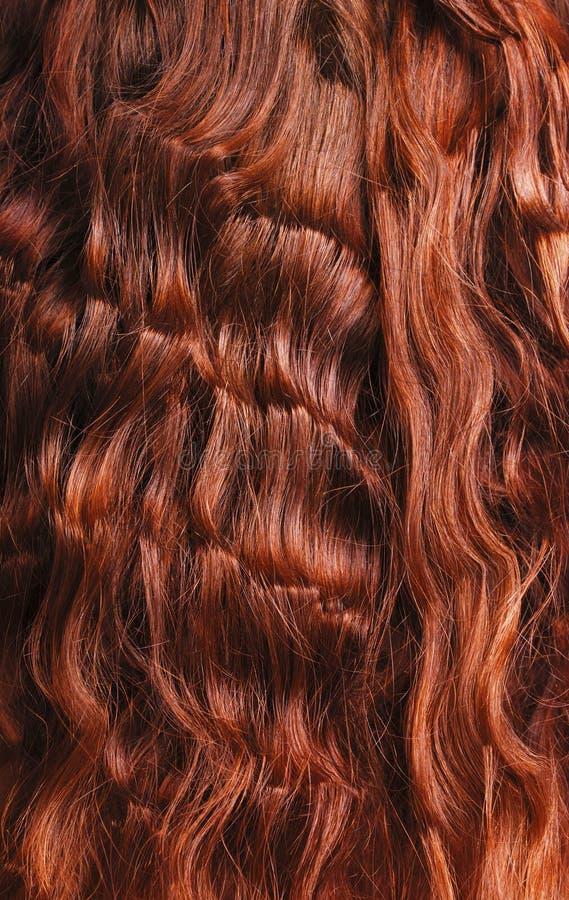 Nahaufnahme des roten lockigen Haares stockbild