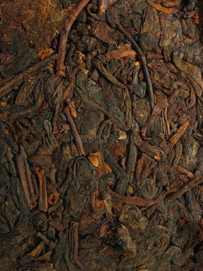 Nahaufnahme des Tees PU-erh lizenzfreies stockfoto